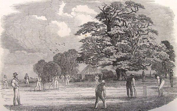 Ancient cricket