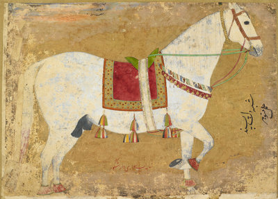 Dil-Pasand horse of Dara Shikoh